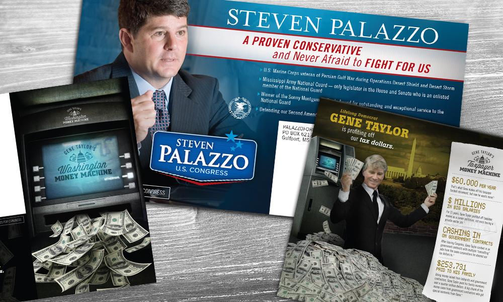 Steven Palazzo for U.S. Congress print collateral by Innovative Politics
