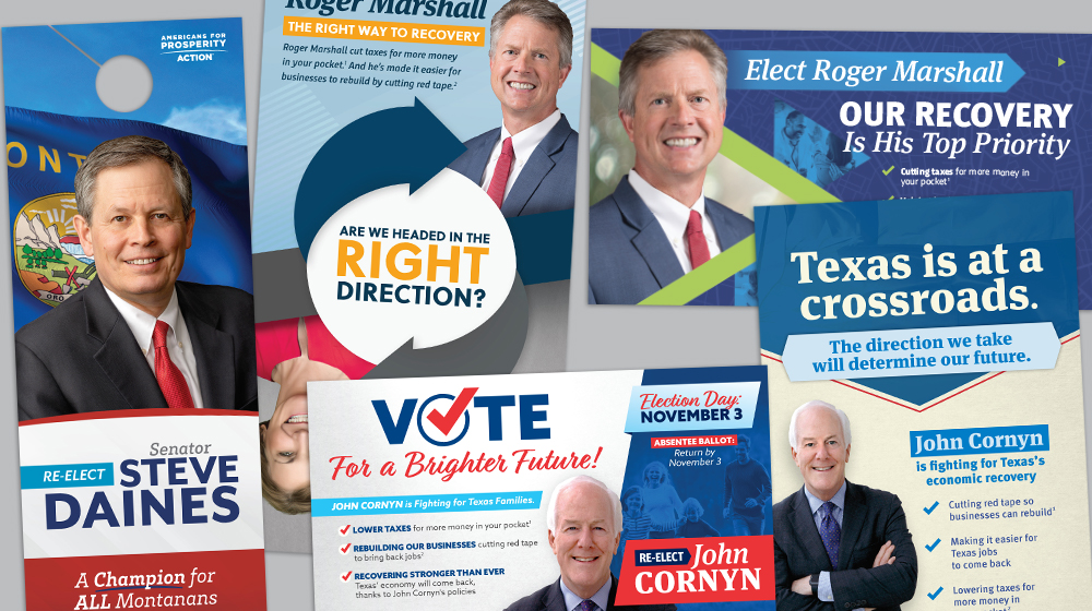 2020 Election Senate direct mail